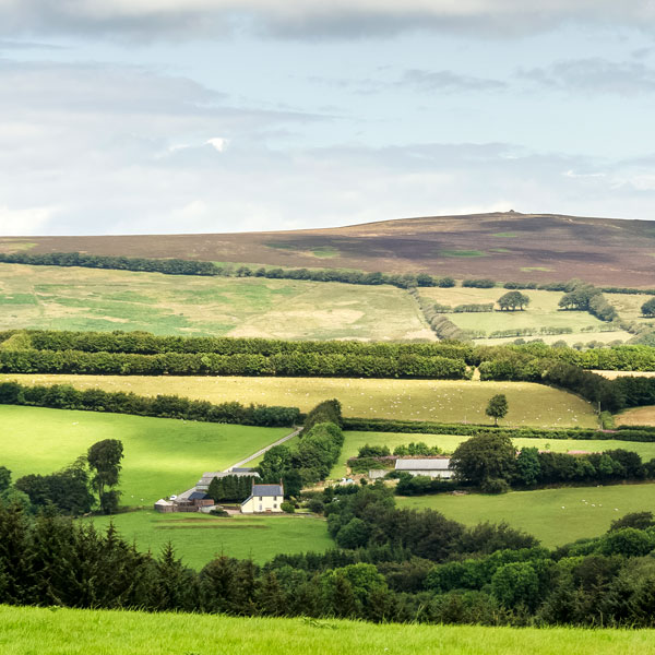 Exmoor farming consultation | Business Action | Independent North Devon-based business magazine | North Devon business news